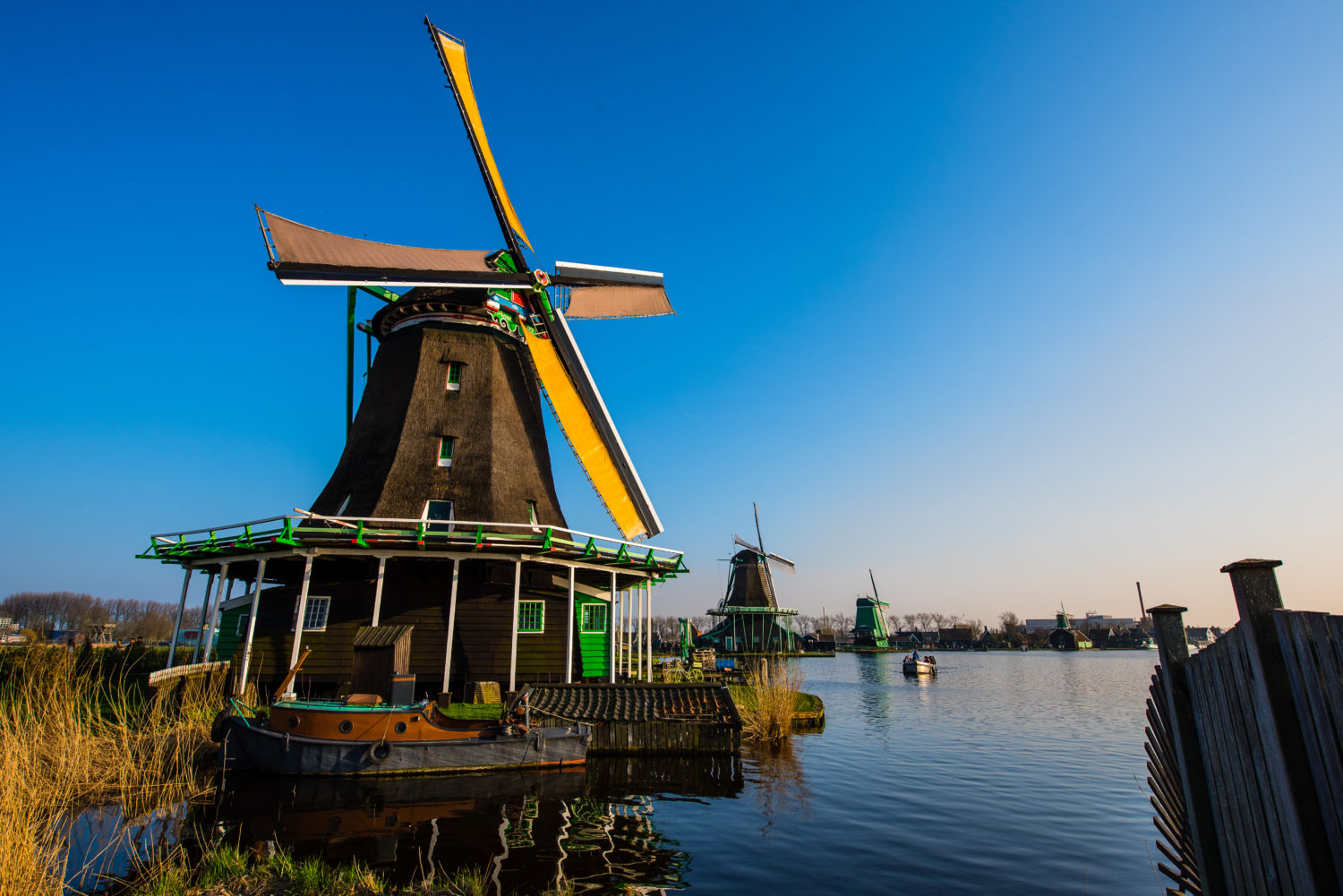Windmills at amsterdam countryside tours